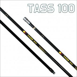 타스 100